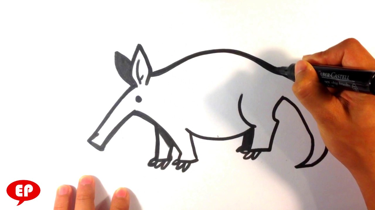 1280x720 How To Draw An Aardvark (Cute)