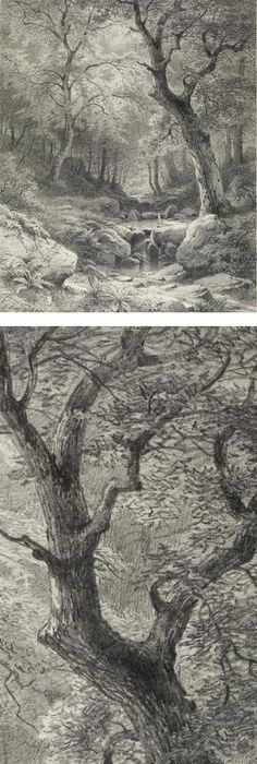 236x700 Landscape Drawings In Coloured Pencil Pencil Drawing