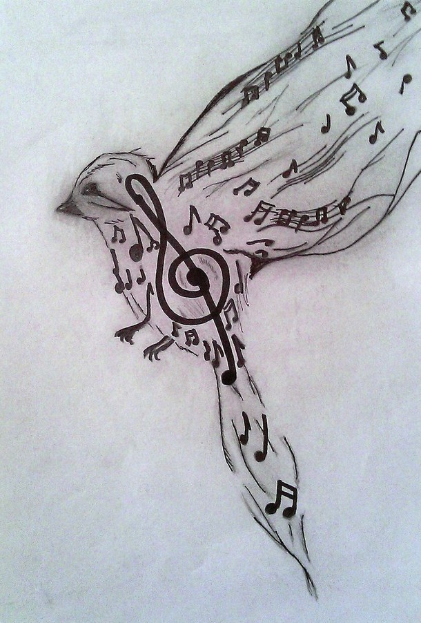 610x902 art bird black clef draw drawings music pencil