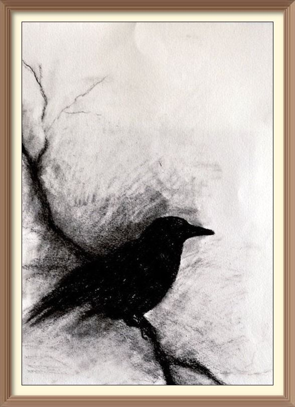 588x809 18 Best Bird Drawings Images On Bird Drawings