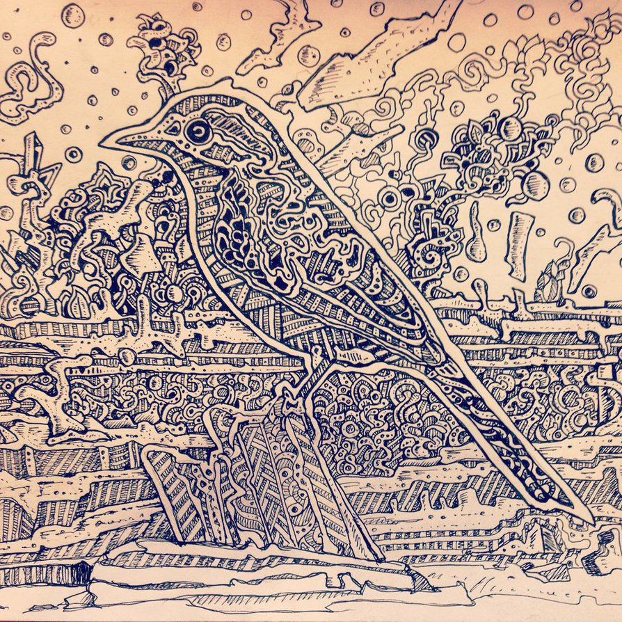 894x894 Abstract Bird Drawing By Nikitagrabovskiy