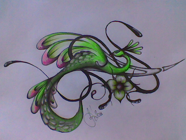 640x480 Hand Drawing Bird Tatto 2011 By Systemofdagobah
