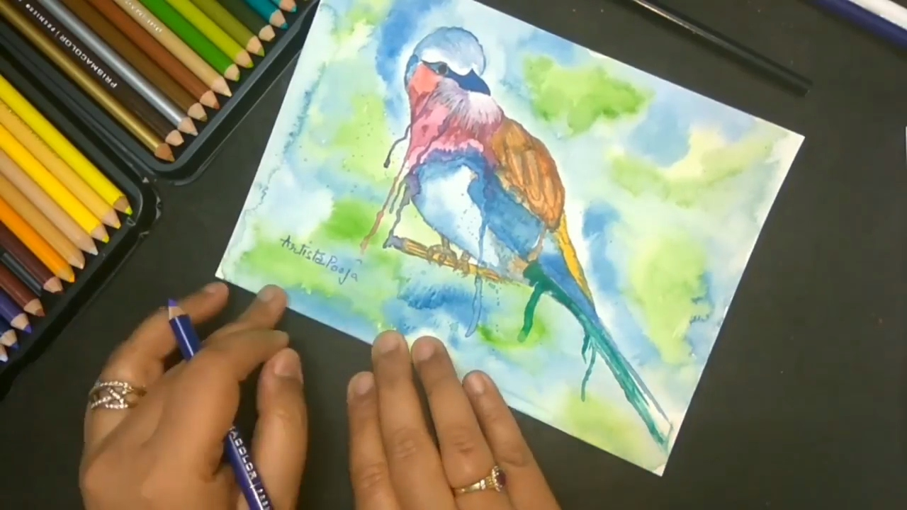 1280x720 How To Draw Abstract Bird In Watercolor