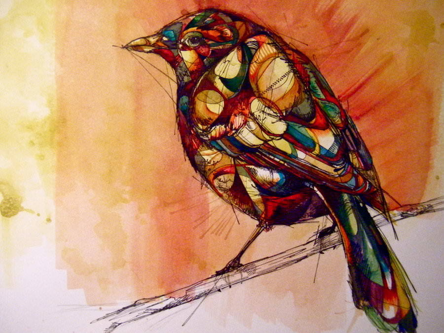 900x675 Rook Bird On A Branch Feathers Nature Animal Abstract Art Drawing