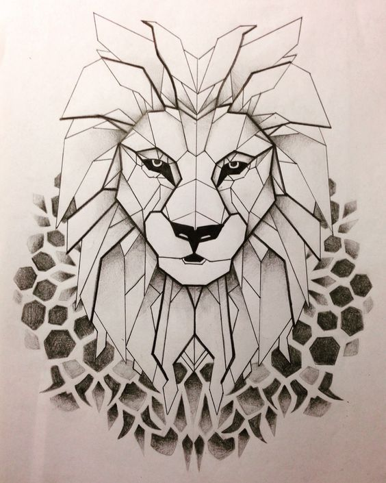 564x705 Lion Abstract Drawing