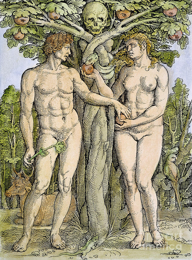 665x900 Adam And Eve Drawing By Granger