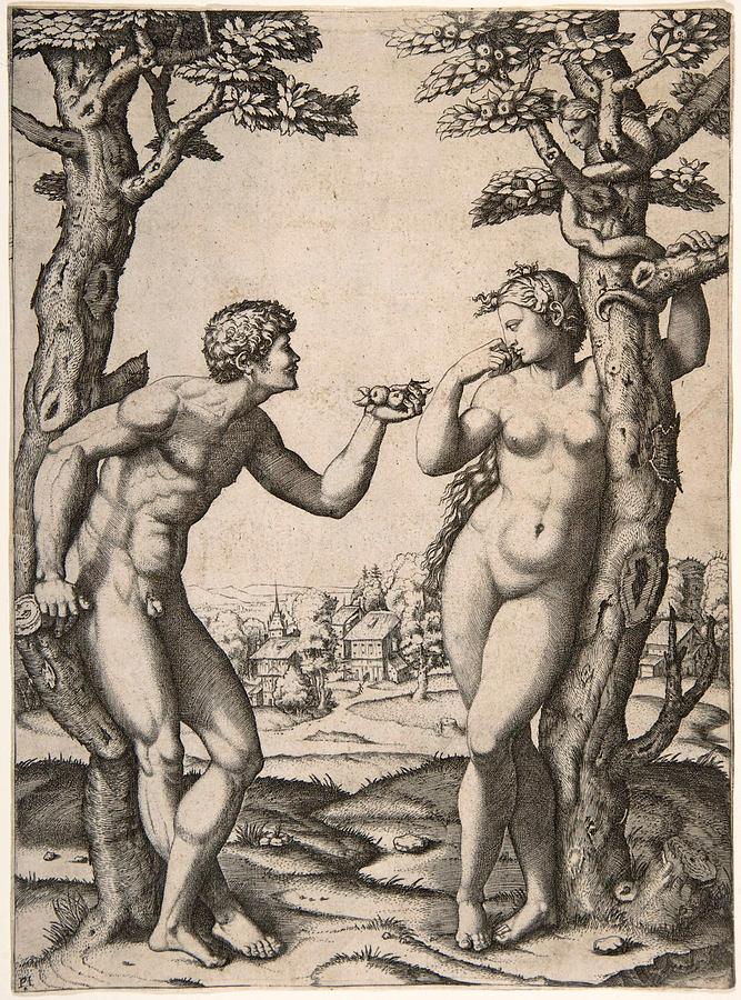 667x900 Adam And Eve Drawing By Marcantonio Raimondi