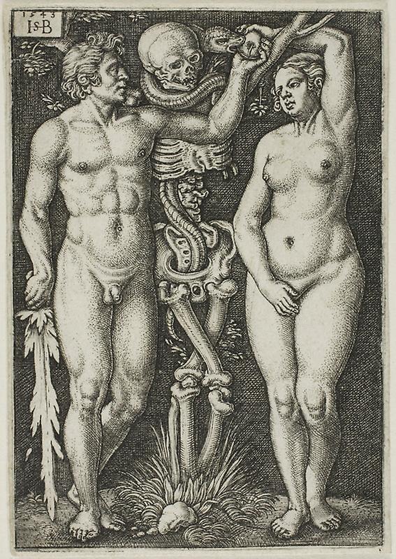 567x800 Adam And Eve The Art Institute Of Chicago