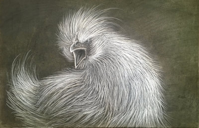 400x259 Drawing