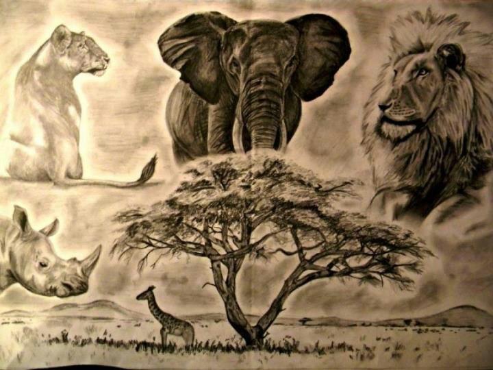720x540 My Africa Drawing Black Art Drawings