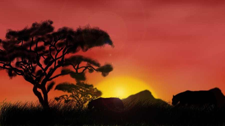 900x506 African Sunset By Sclarke1991