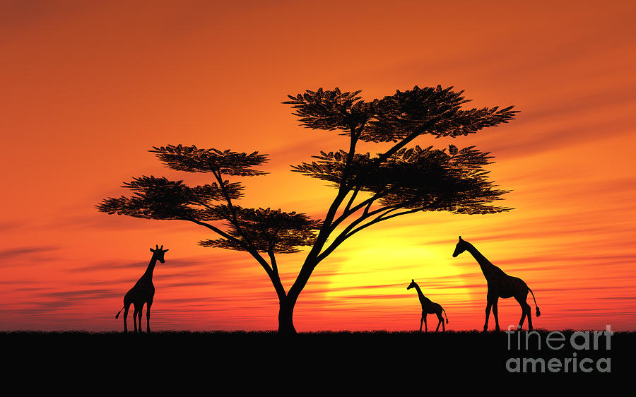 900x562 African Sunset With Animals African Sunset Digital Art By Peter