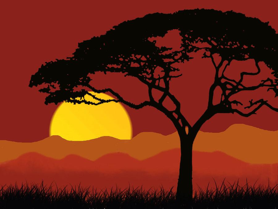 900x675 African Night Jungle Landscape By Abhidhanbad111