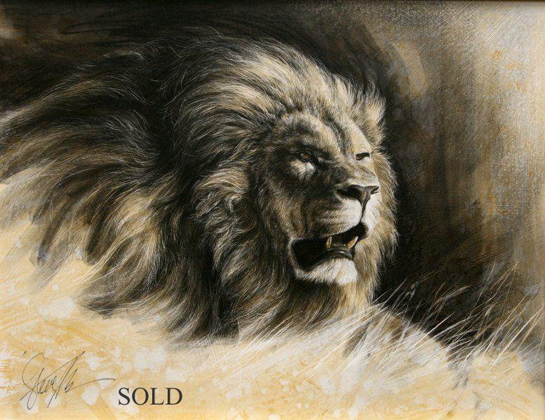 777x600 Mammals Lion's Lions