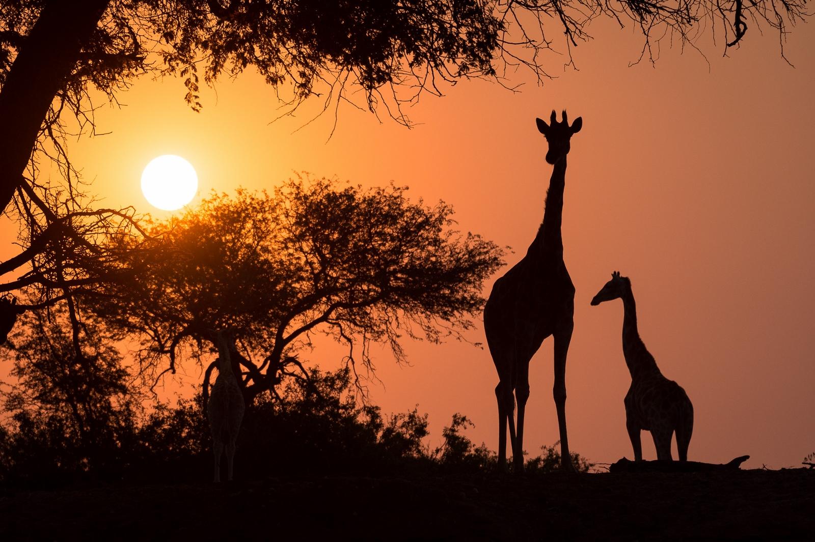 1600x1065 Travel Beyond Luxury Safaris And Custom Travel Planning