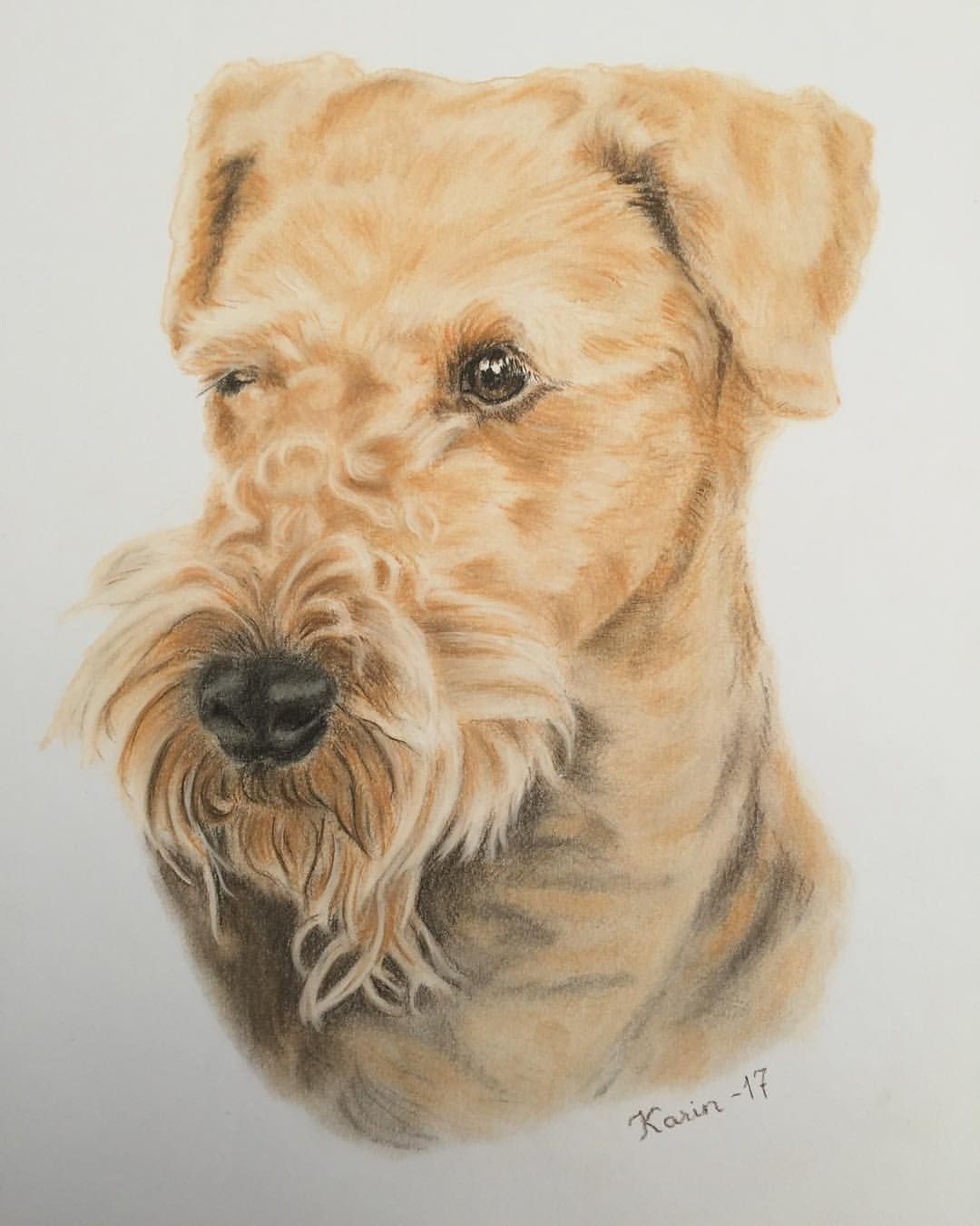 1080x1350 Airedale Terrier. Dog Portrait. Pastel Drawing By Karin Marjamaa