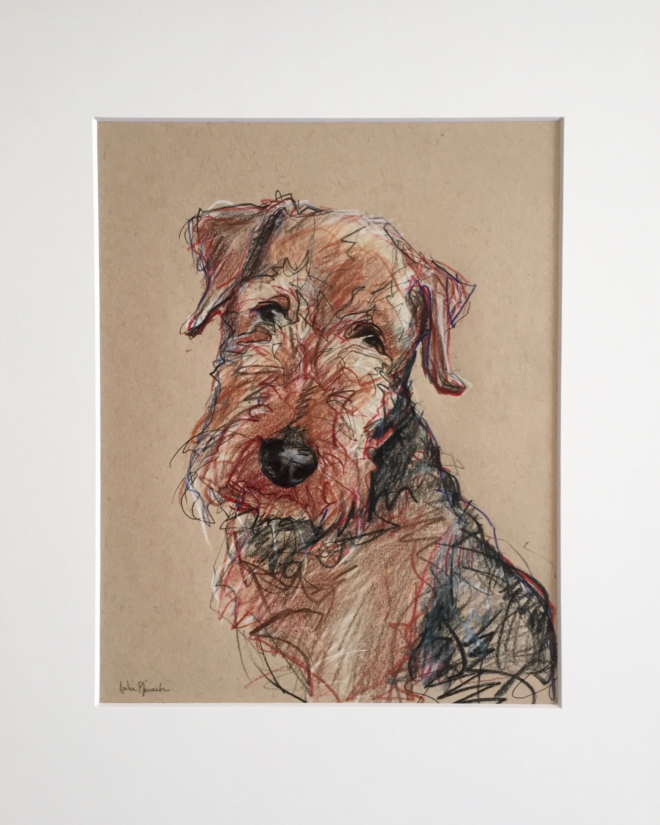 2291x2863 Winnifred Hand Drawn Pet Portrait Pencil, Colored Pencil And Ink