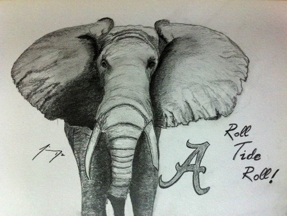 570x429 Tribute To The University Of Alabama Roll Tide
