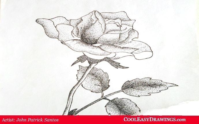 690x430 Easy Rose Drawing In Pen Amp Ink Dot Method