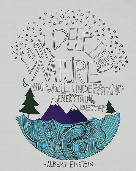 458x576 Look Deep Into Nature And You Will Understand Everything Better