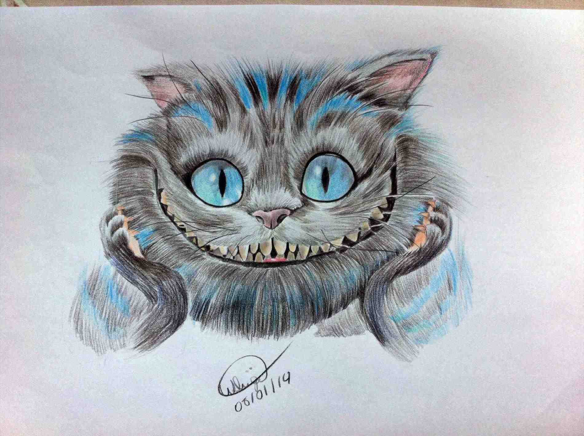 how to draw cheshire cat face