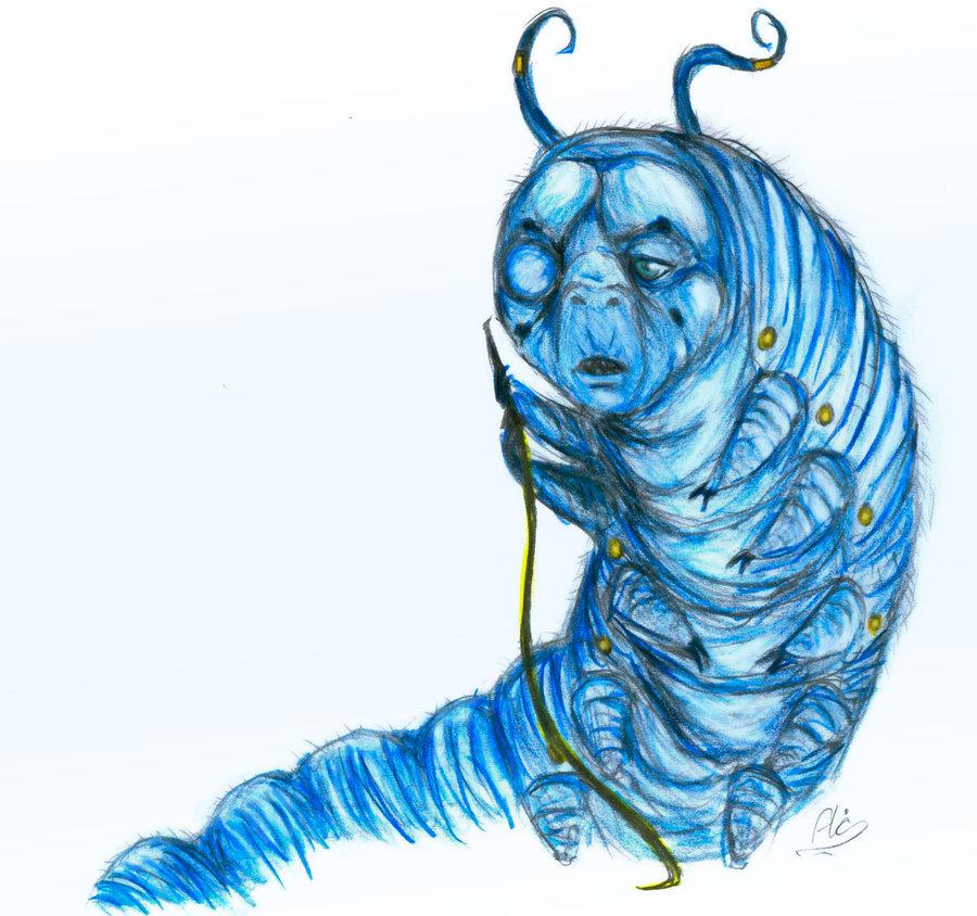 900x844 Caterpillar Alice In Wonderland Drawing
