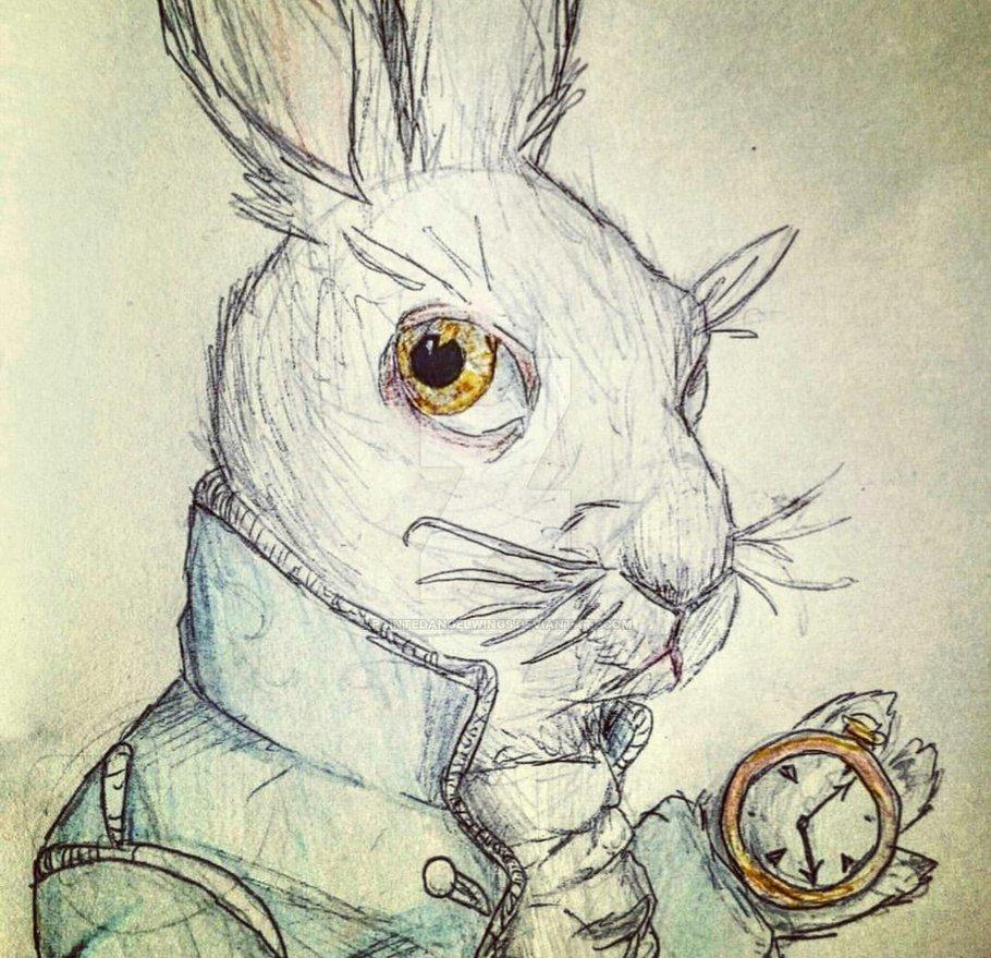 910x879 White Rabbit Alice In Wonderland By Paintedangelwings