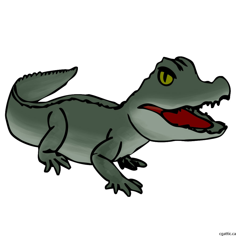 1000x1000 Cartoon Alligator Drawing in 4 Steps With Photoshop
