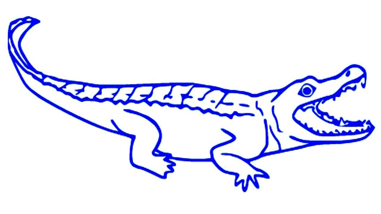 1280x720 Coloring Pages Alligator drawing cartoon alligator crocodile