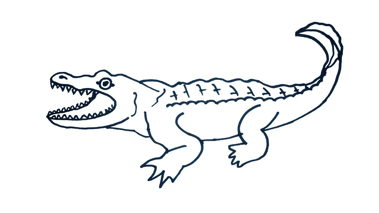 1280x720 Crocodile Drawing How to draw Crocodile Easy Step By Step