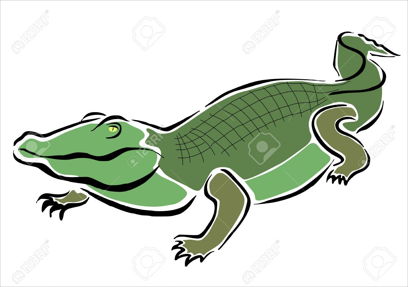 1300x916 Drawing Of A Crocodile Royalty Free Cliparts, Vectors, And Stock