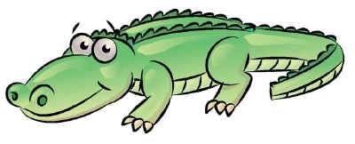 400x162 How to Draw an Alligator HowStuffWorks