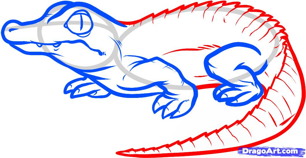 1059x547 Crocodile Head Drawing Clipart Panda