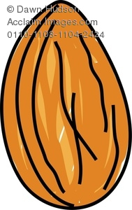 189x300 Clipart Image Of A Whimsical Drawing Of An Almond