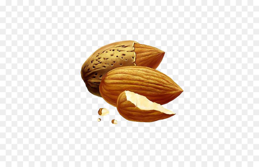 900x580 Nut Almond Drawing