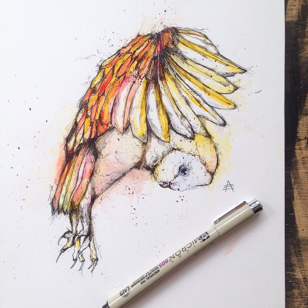 1080x1080 Check Out Alfred Basha's Amazing Drawings On Instagram Or You Can