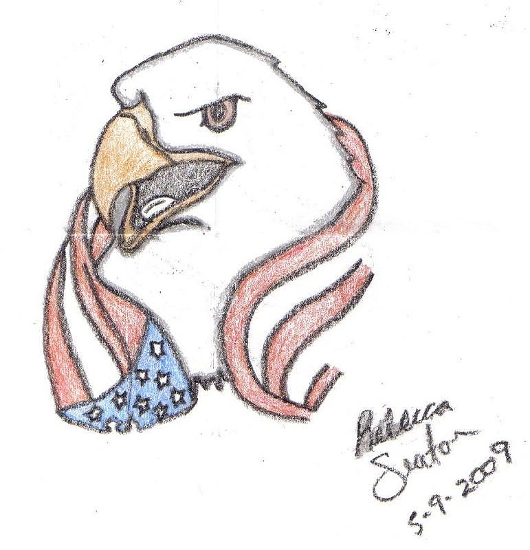 771x800 American Eagle Drawing By Rebecca Seaton