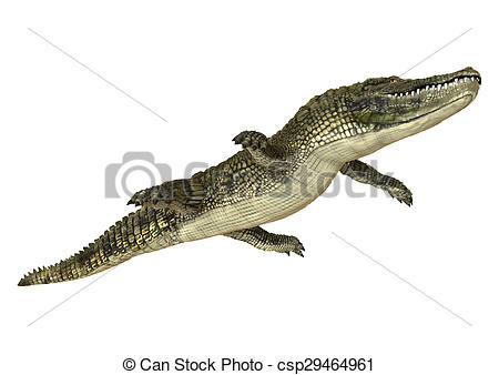 450x338 3d Digital Render Of An American Alligator Isolated On White