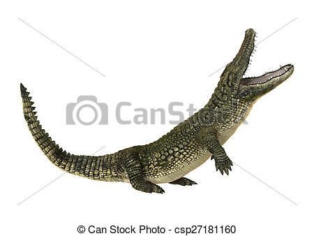 450x338 3d Digital Render Of An American Alligator Or Alligator Stock