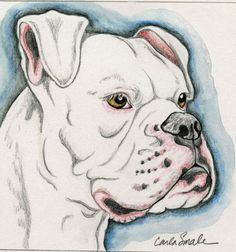 236x252 Custom Portrait Of My Brother's American Bulldog, Winter A Great