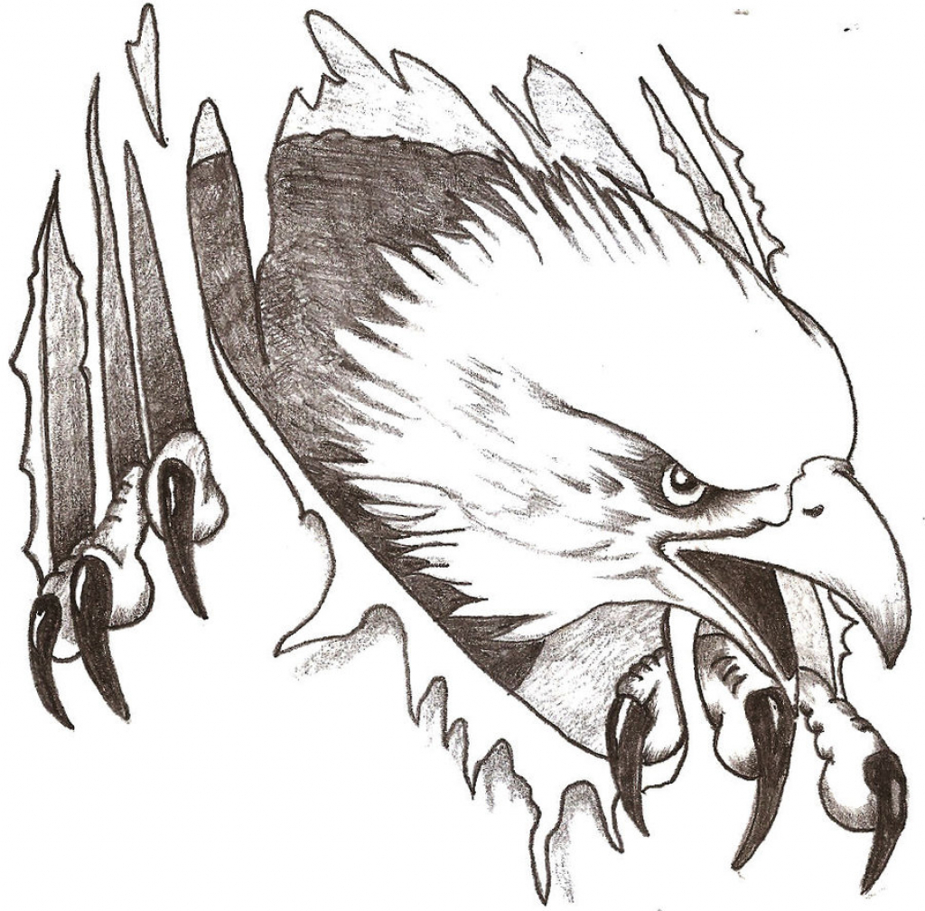 1024x1008 American Eagle Draw 126 Eagle Drawing Tiny Clipart
