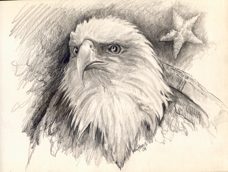 800x603 Eagle Head Pencil Kim Pearce Paintings Amp Drawings