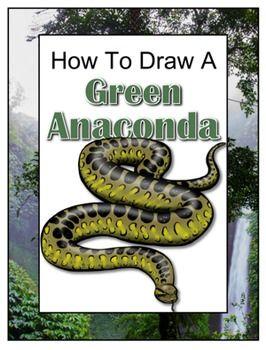 266x350 How To Draw A Green Anaconda Green Anaconda, Paragraph And Life