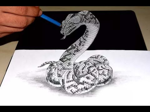 480x360 Shrishti Arts Forest's Anaconda 3d Pencil Sketch Art