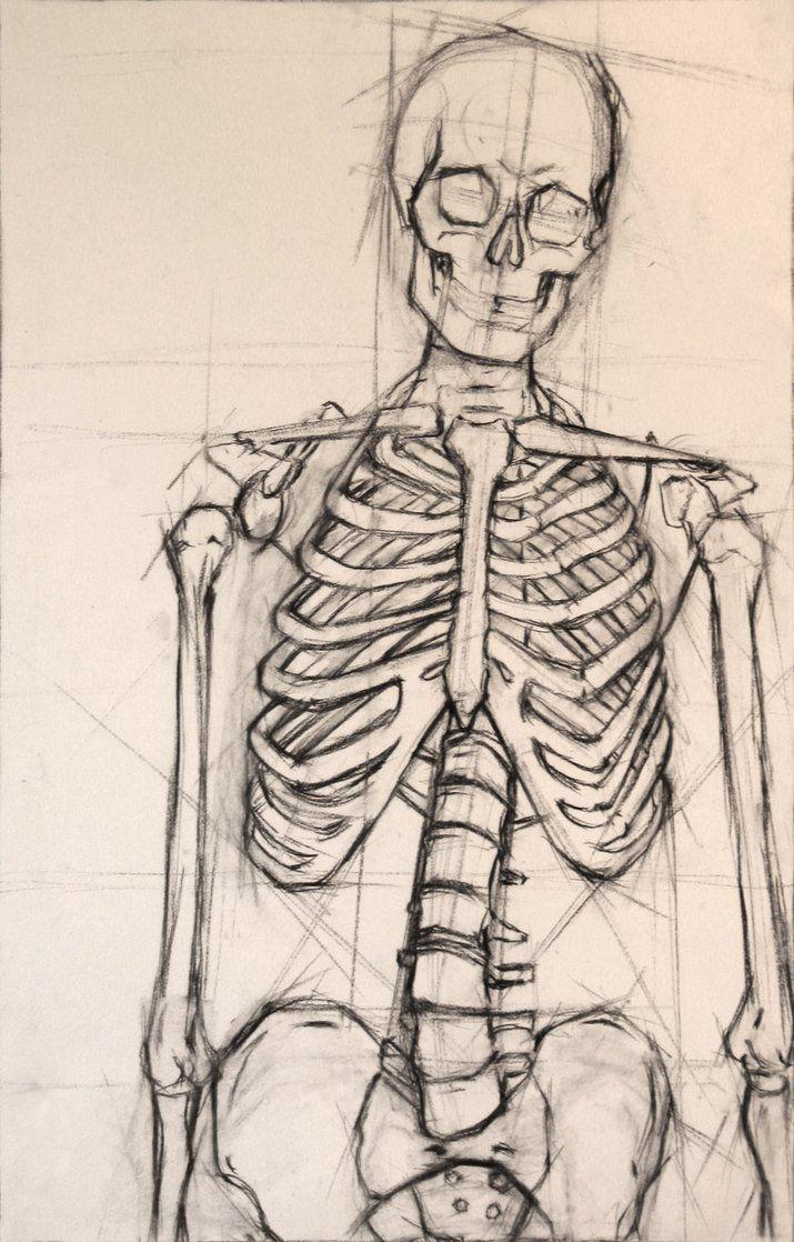 715x1118 Skeleton To Draw