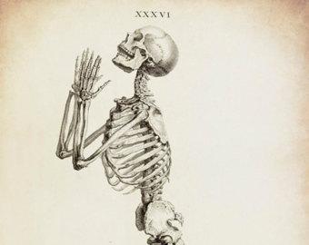 340x270 Skeleton Drawing Etsy