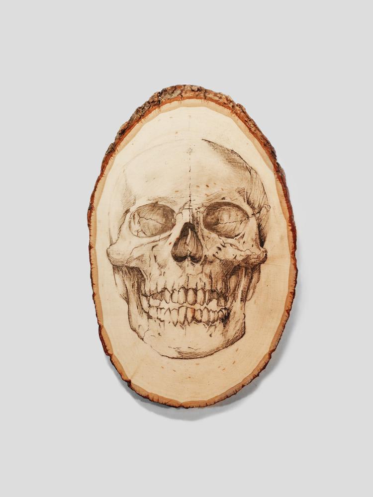 750x1000 Anatomical Skull Art Hood Amp Co.