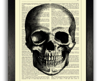 340x270 Anatomy Poster Yellow Amp Red Flowers Growing Over Skull Art
