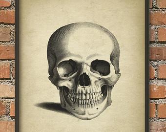 340x270 Skull Poster Etsy