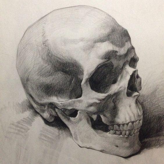 564x564 Anatomical, Nude, And Academic Studies